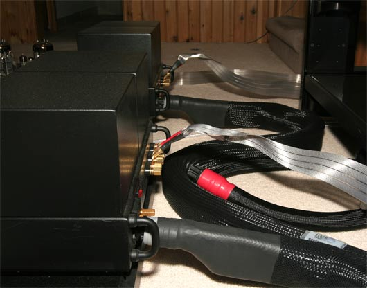 The power cords powering the ML2.1